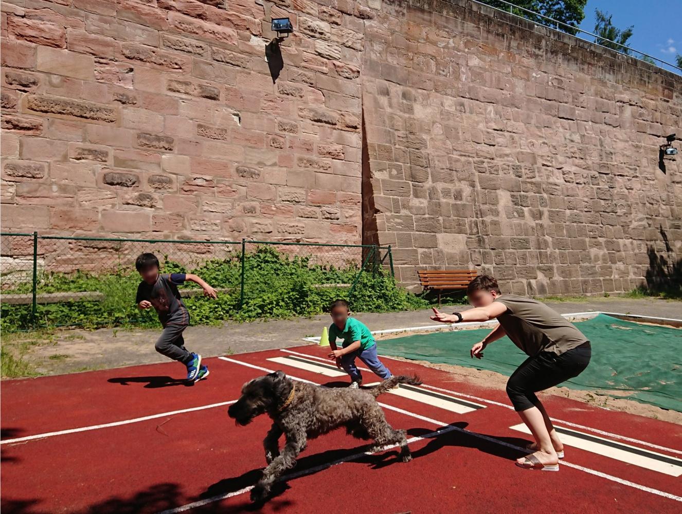 """Milo  """"auf Arbeit"""" sportlich geschoren als Schulhund mit Frauchen im Sportunterricht – zur Freude aller Beteiligten beim Wettrennen"""